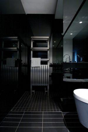 Edelstahl badezimmer design heizkörper Hercules